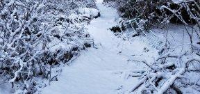珠峰户外1.30赏冬日邓生沟绚丽雪景、穿越徒步